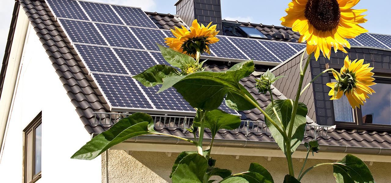 plusshus, nullutslippsbygg og passivhus er fremtidens miljøsparende hus